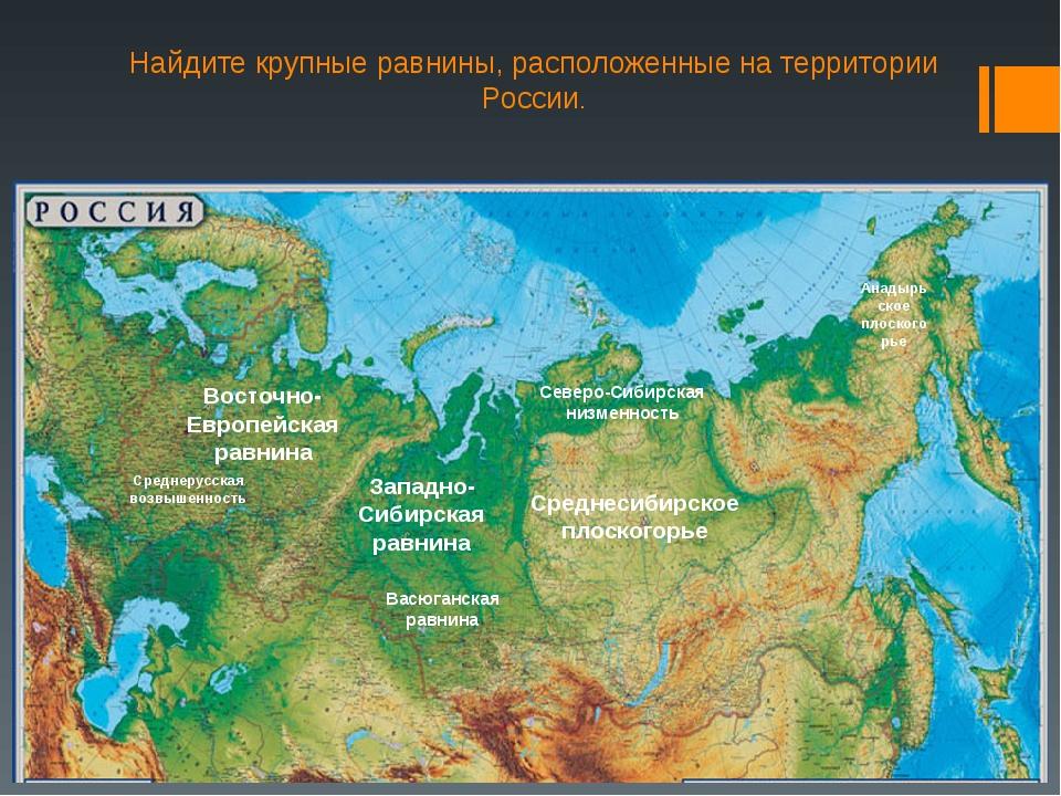 Найдите крупные равнины, расположенные на территории России. Восточно-Европей...