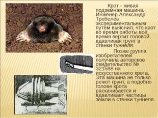 Крот - живая подземная машина. Инженер Александр Требелев экспериментальным
