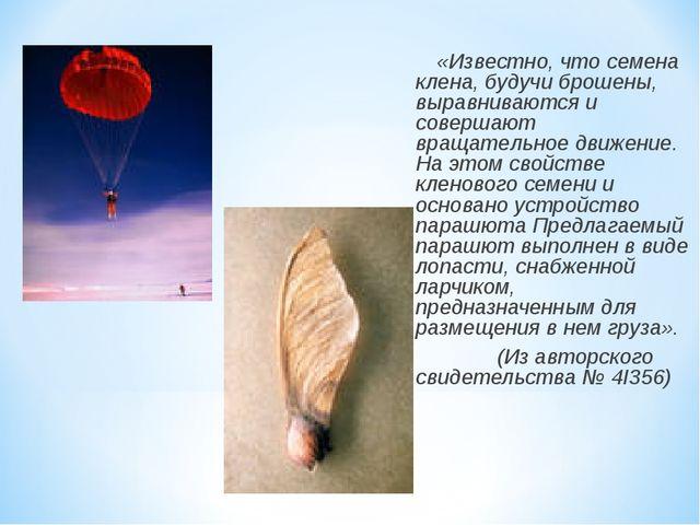 «Известно, что семена клена, будучи брошены, выравниваются и совершают вpа...