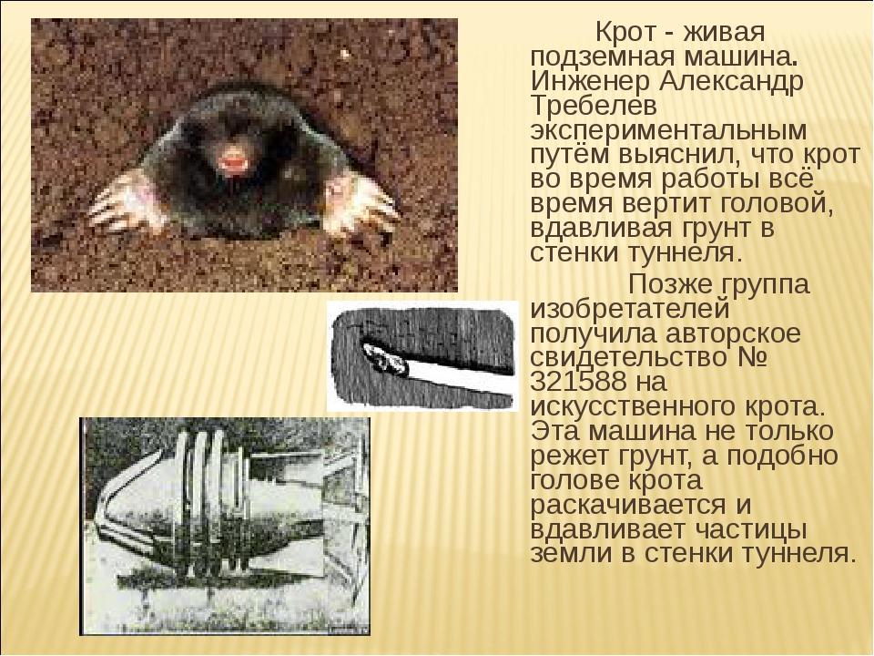 Крот - живая подземная машина. Инженер Александр Требелев экспериментальным...
