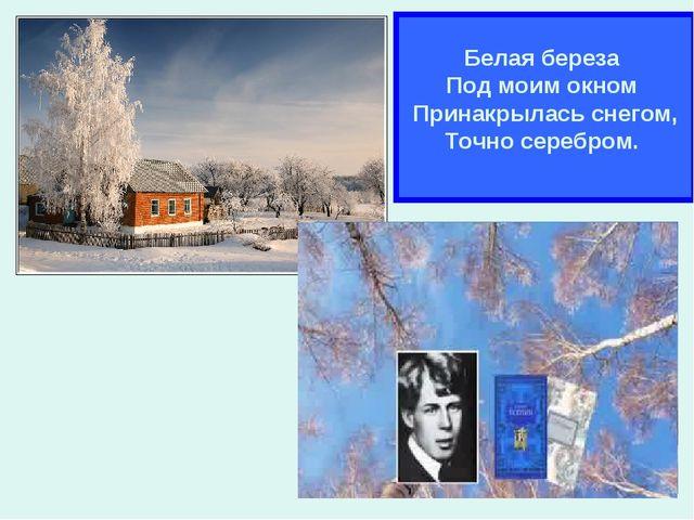 * Белая береза Под моим окном Принакрылась снегом, Точно серебром.