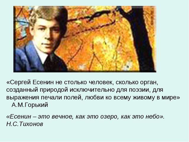«Сергей Есенин не столько человек, сколько орган, созданный природой исключит...