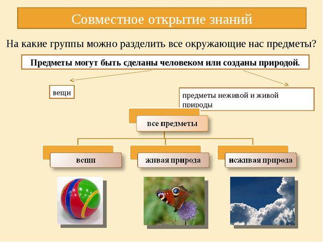 На какие группы можно разделить все окружающие нас предметы? Совместное откр...