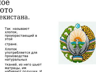 Белое золото Узбекистана. Так называют хлопок, произрастающий в этой стране.