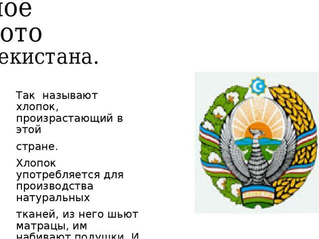 Белое золото Узбекистана. Так называют хлопок, произрастающий в этой стране....