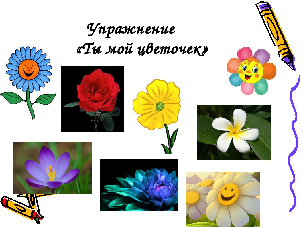 Упражнение «Ты мой цветочек»