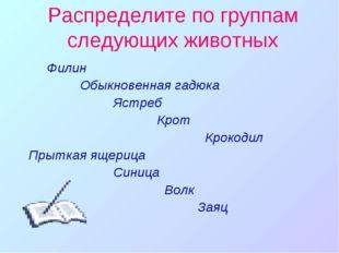 Распределите по группам следующих животных Филин Обыкновенная гадюка Ястреб К
