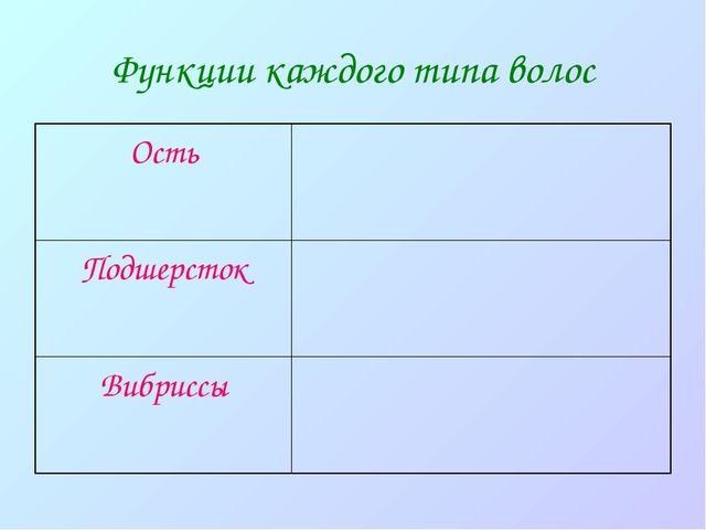 Функции каждого типа волос Ость Подшерсток Вибриссы
