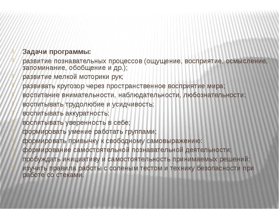 Задачи программы: развитие познавательных процессов (ощущение, восприятие, о...