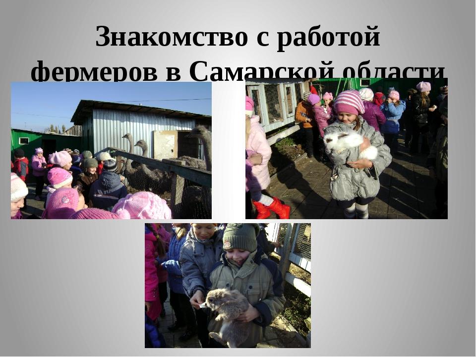 Знакомство с работой фермеров в Самарской области
