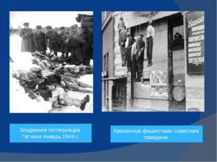 Злодеяния гитлеровцев. Гатчина январь 1944 г. Казненные фашистами советские