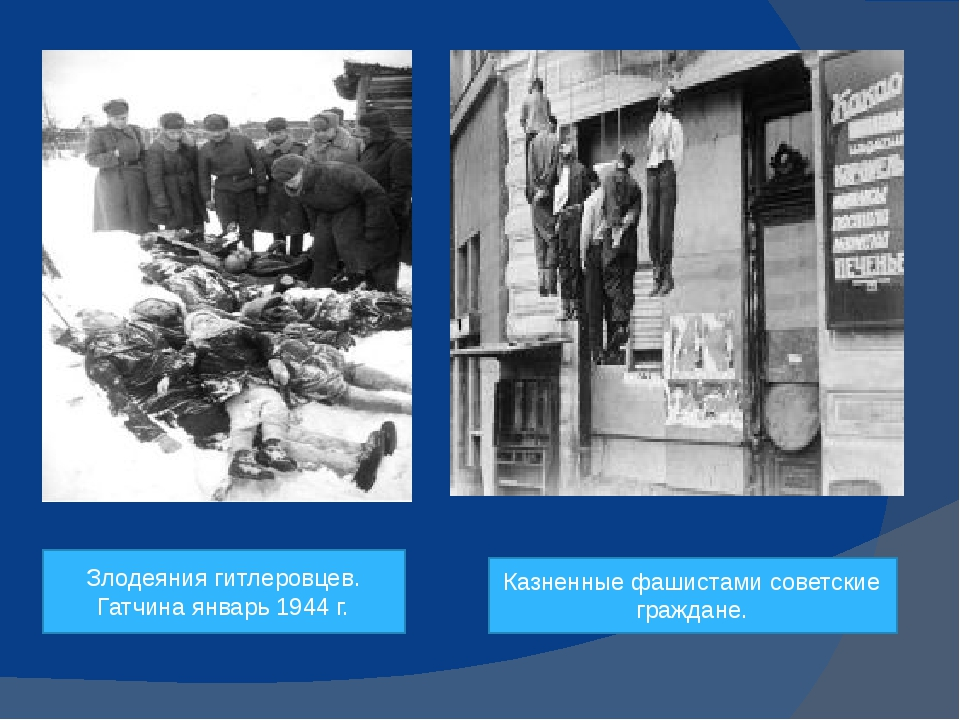 Злодеяния гитлеровцев. Гатчина январь 1944 г. Казненные фашистами советские...