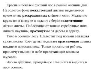 Красив и печален русский лес в ранние осенние дни. На золотом фоне пожелтевш