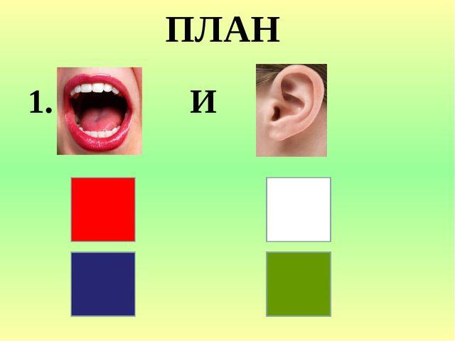 ПЛАН 1. И 2. ? 3. ?