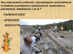 Как называют учёного, изучающего ископаемые остатки вымерших организмов: живо