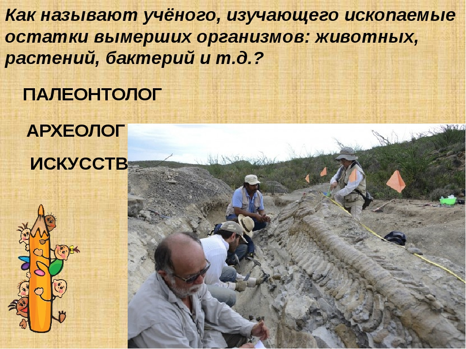 Как называют учёного, изучающего ископаемые остатки вымерших организмов: живо...