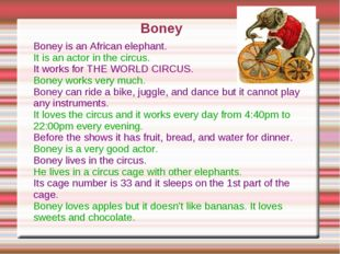 Boney is an African elephant. It is an actor in the circus. It works for THE