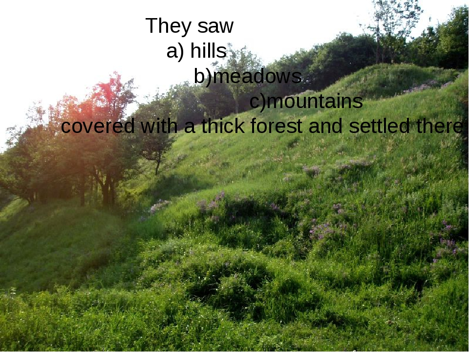 They saw a) hills b)meadows c)mountains covered with a thick forest and settl...