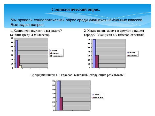 Социологический опрос. Мы провели социологический опрос среди учащихся началь...