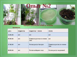 Опыт №2 Процесс роста растений в течение времени. дата гидрогель гидрогель +