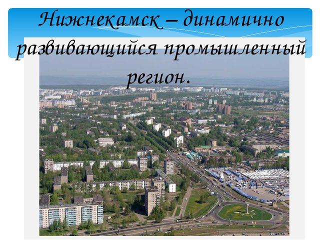 Нижнекамск – динамично развивающийся промышленный регион.
