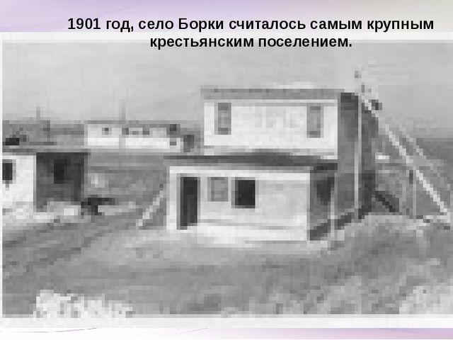 1901 год, село Борки считалось самым крупным крестьянским поселением.