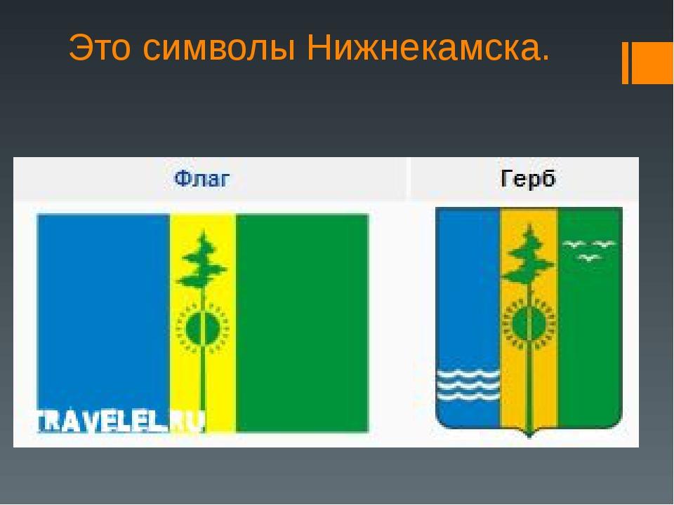 Это символы Нижнекамска.
