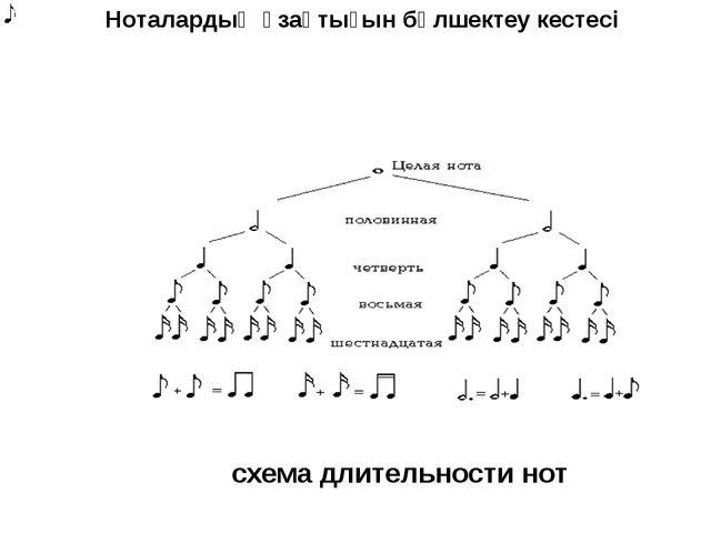 Ноталардың ұзақтығын бөлшектеу кестесі схема длительности нот