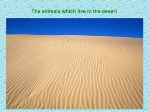 The animals which live in the desert
