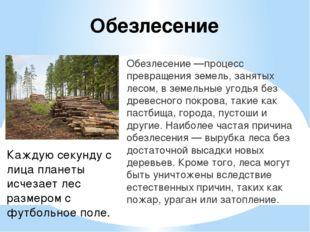 Обезлесение Обезлесение —процесс превращения земель, занятых лесом, в земельн