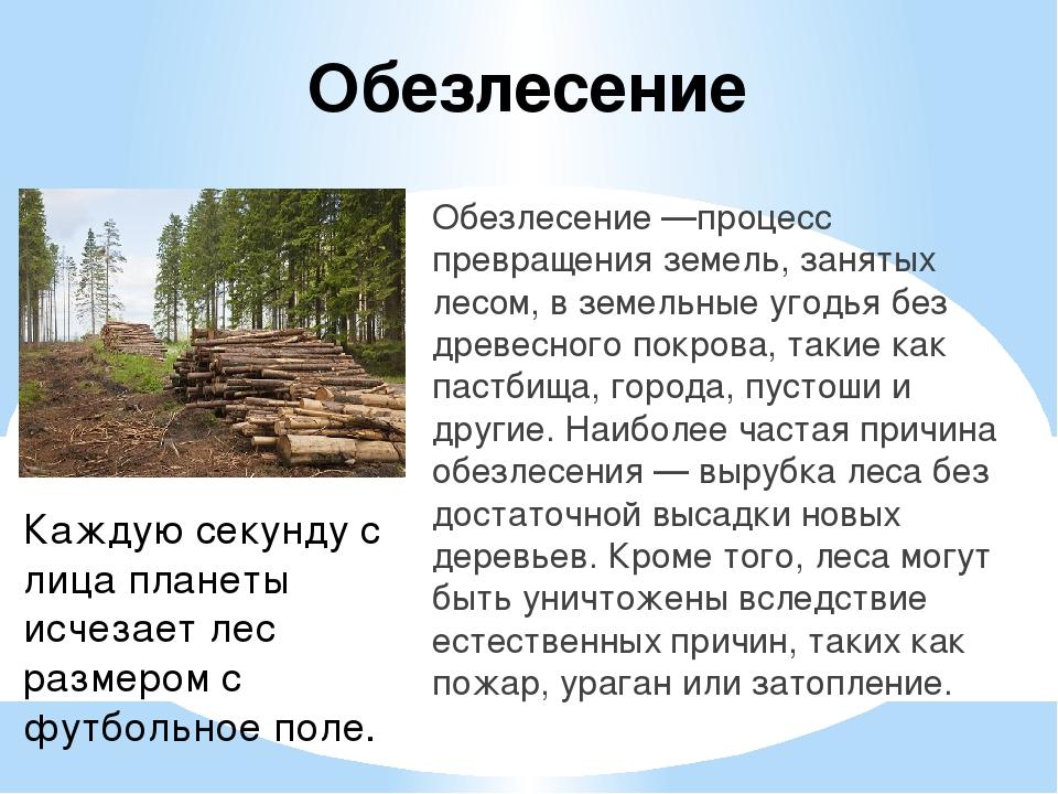 Обезлесение Обезлесение —процесс превращения земель, занятых лесом, в земельн...