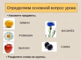 Определяем основной вопрос урока Назовите предметы. Разделите слова на группы