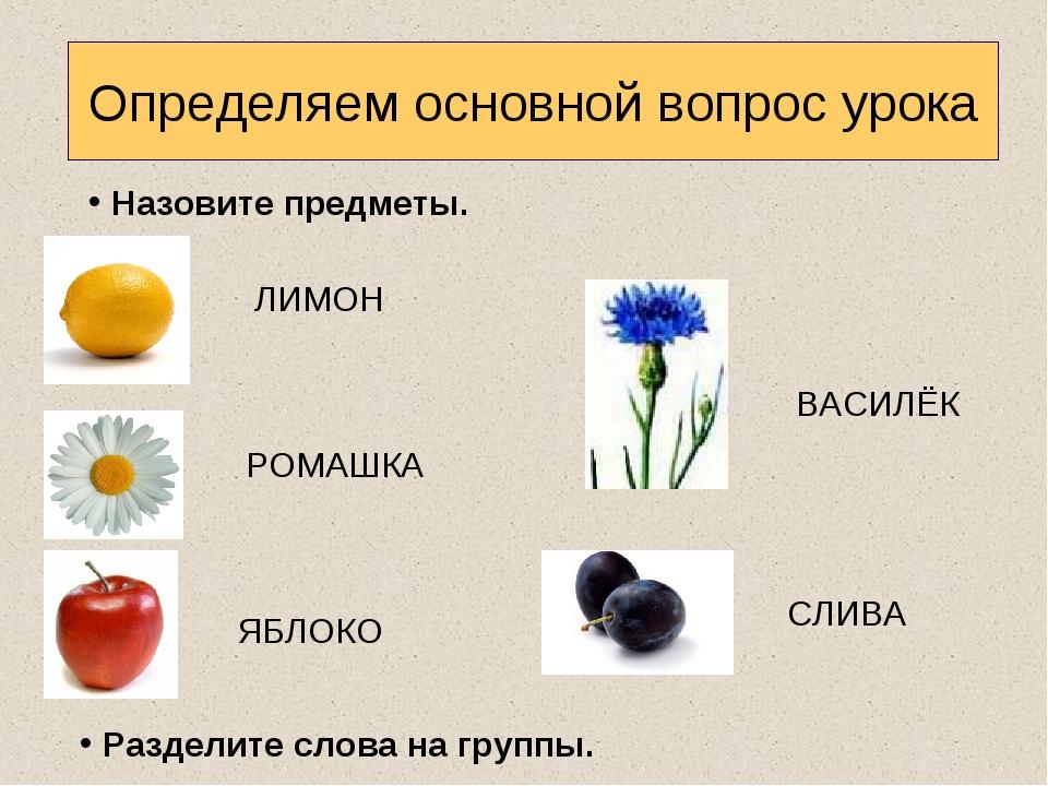 Определяем основной вопрос урока Назовите предметы. Разделите слова на группы...