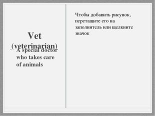 Vet (veterinarian) A special doctor who takes care of animals
