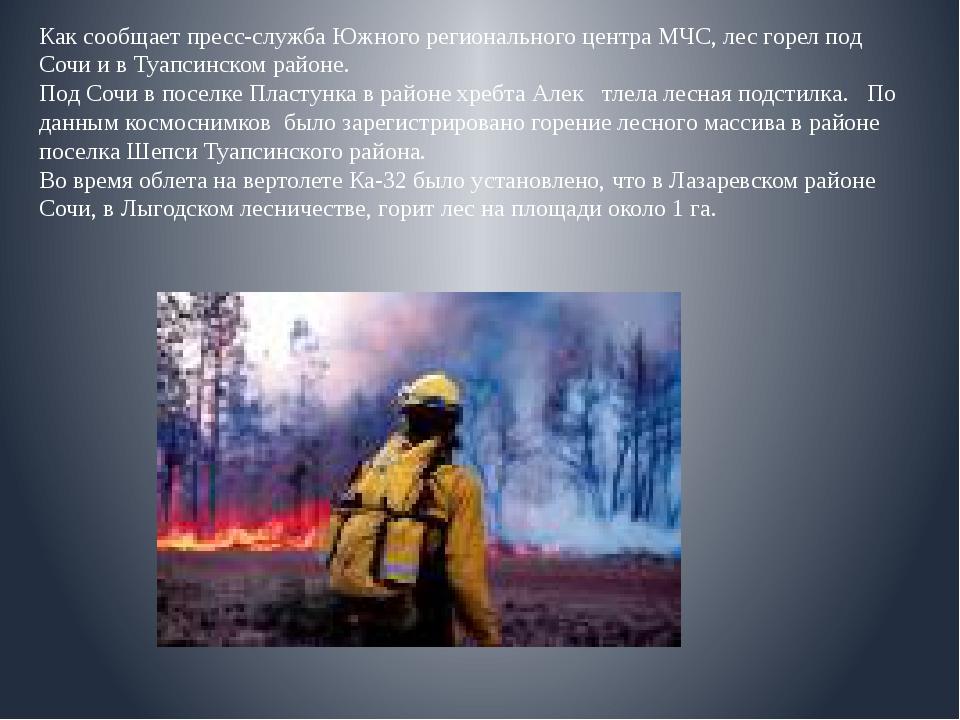 Как сообщает пресс-служба Южного регионального центра МЧС, лес горел под Соч...