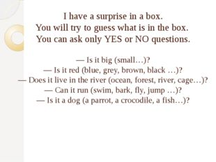 I have a surprise in a box. You will try to guess what is in the box. You can