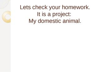 Lets check your homework. It is a project: My domestic animal.