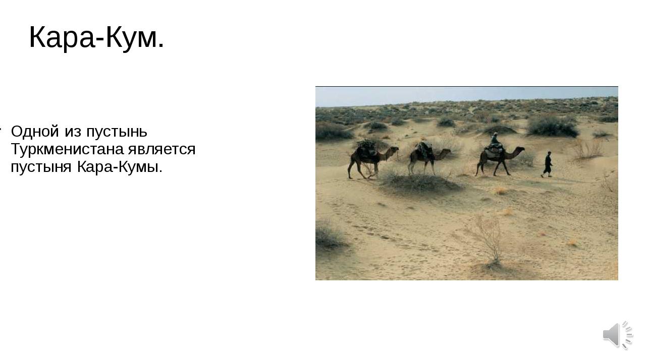 Кара-Кум. Одной из пустынь Туркменистана является пустыня Кара-Кумы.