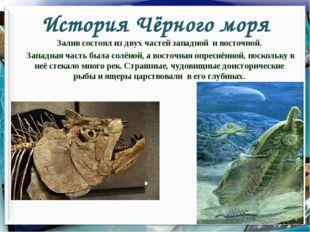 История Чёрного моря Залив состоял из двух частей западной и восточной. Запад