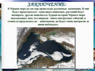 ЗАКЛЮЧЕНИЕ: * В Чёрном море до сих пор происходят различные изменения. И они