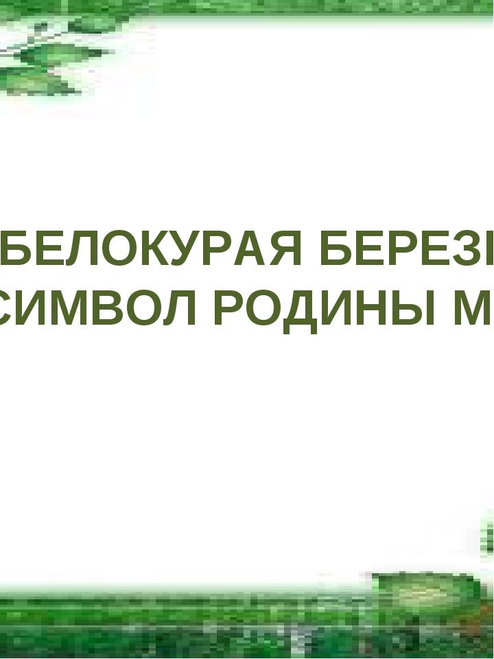 БЕЛОКУРАЯ БЕРЕЗКА - СИМВОЛ РОДИНЫ МОЕЙ
