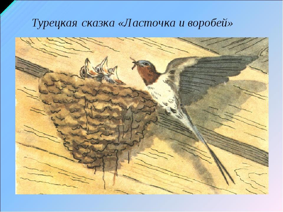 Турецкая сказка «Ласточка и воробей»