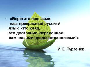 «Берегите наш язык, наш прекрасный русский язык, -это клад, это достояние, п
