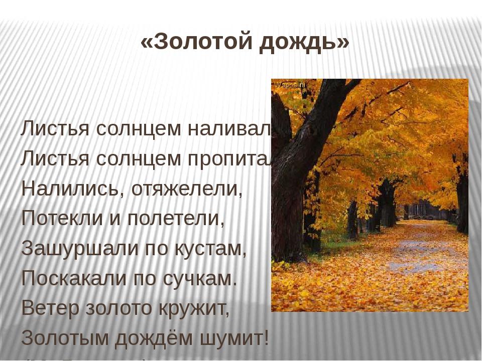 «Золотой дождь» Листья солнцем наливались. Листья солнцем пропитались. Налил...