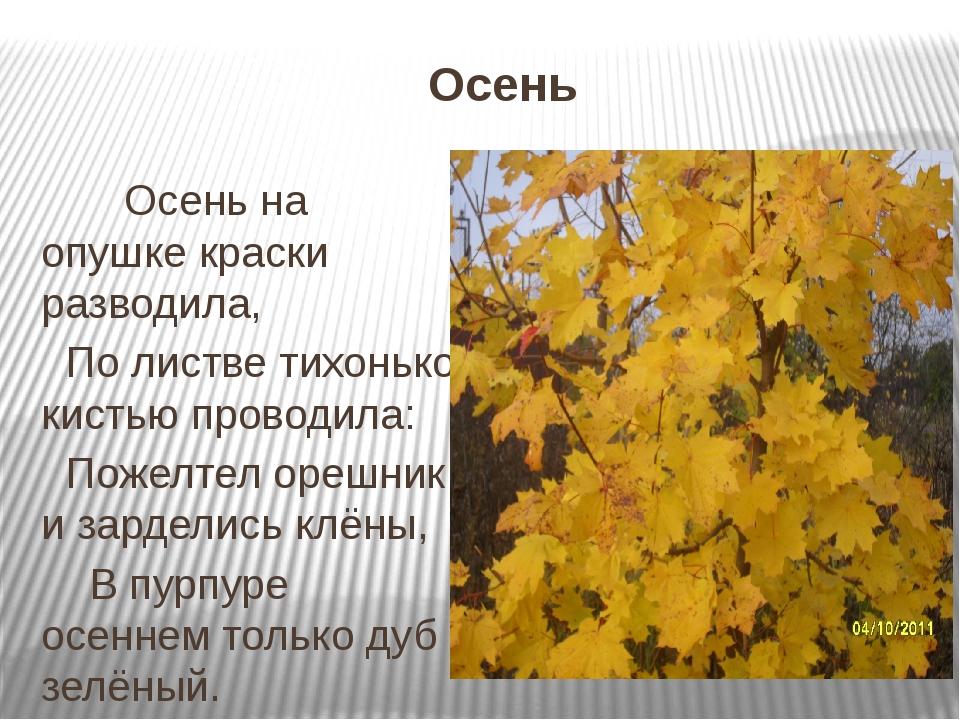 Осень Осень на опушке краски разводила, По листве тихонько кистью проводила:...