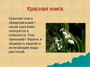 Красная книга Красная книга предупреждает какие растения находятся в опасност