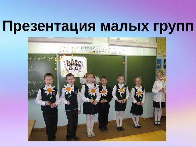 Презентация малых групп