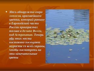 Здесь обнаружено озеро лотосов, красивейшего цветка, который раньше в Европей