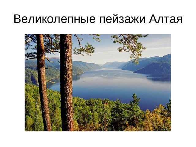 Великолепные пейзажи Алтая
