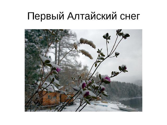 Первый Алтайский снег